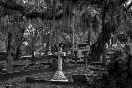 Spooky cemetery with tombstones and tree with spanish moss