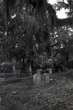 Isolated graves outside the fence in the cemetary Banco de Imagens