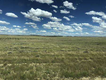 Green prairie with a blue sky and very distant mountains