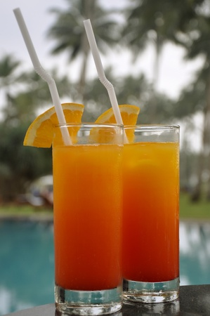 Two Glasses of Tequila Sunrise on the poolside surrounded by Palm Trees Stock Photo - 11966259