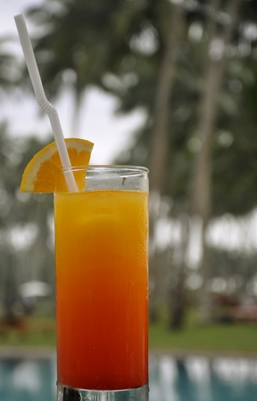 A Glass of Tequila Sunrise on the poolside surrounded by Palm Trees Stock Photo - 11966262