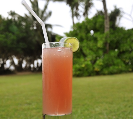 A Glass of Singapore Sling against greenery photo