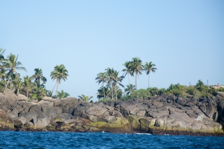 The seashore of Unawatuna, Sri Lanka dotted with palm trees photo