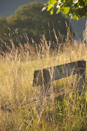 A wooden bench amidst a field near Vevey, Switzerland Stock Photo