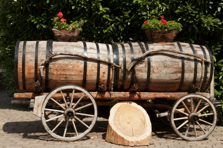 Wine Barrels in Aigle, Switzerland photo