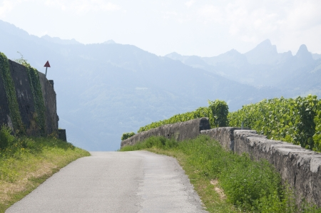 A winding road in Switzerland photo