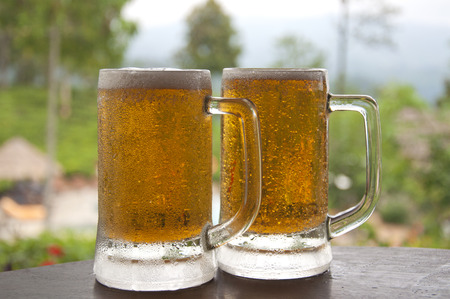 Two Mugs of Chilled Beer photo