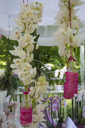 white orchids: Beautiful Wedding Theme Arrangement of White Orchids in Bottles