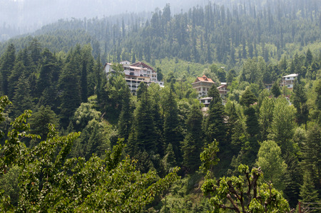 inhabited: A Beautiful Home Amidst Greenery in Manali, India
