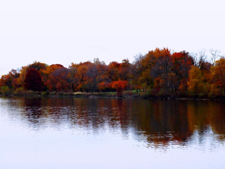Fall colors reflected on the Cooper River at dusk.