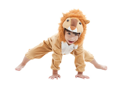 Little lovely asian boy trick or treat concept, lovely boy costumed and acting like a lion, isolated on white background Фото со стока