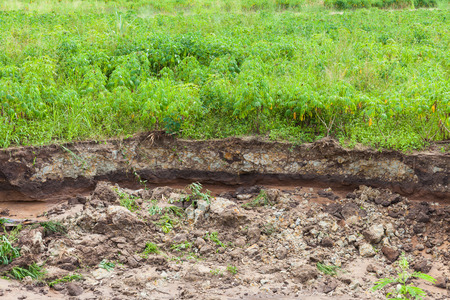 degradation: Water erosion through the cultivated area, soil degradation