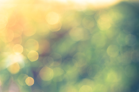 Defocused Bokeh, twinkling lights vintage blurred bokeh abstract light spring forest background. Natural bokeh from leaf tree. Blur picture style. photo