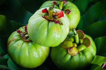 nutricion: Naturaleza muerta con frescos garcinia cambogia en el fondo de madera. Garcinia es hierbas thai (sur de Tailandia) y un mont�n de sabor amargo de la vitamina C. imagen clave baja style.Closeup