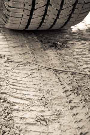skidding: Closeup texture wheel with tyre tracks in the ground in sunlight. Wheel tracks on dirt. Focus on tire track