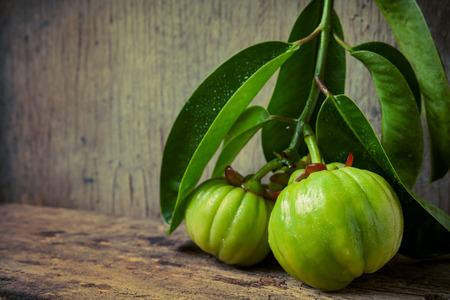 Still life garcinia atroviridis fresh fruit on old wood background. Thai herb and sour flavor lots of vitamin C. Low key picture style. Water drops on leafs. Extract as a weight loss product