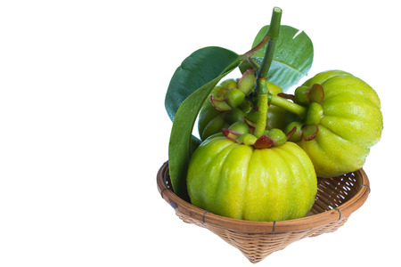 Still life garcinia atroviridis fresh fruit on wood basket. Isolated on white background. Thai herb and sour flavor lots of vitamin C. Extract as a weight loss product.