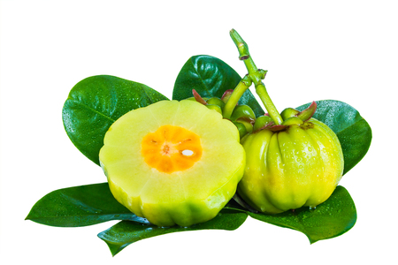 Garcinia atroviridis fruit on leaves, isolated on white background. Herb sour flavor lots of vitamin C for good health. Diet healthcare weight reduction concept