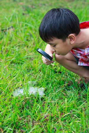 Happy kid enjoying in nature. Young asian boy exploring nature at water droplets on a spider web (cobweb) with magnifying glass. Outdoors in the day time with bright sunlight.
