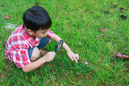 children day: Happy kid enjoying in nature. Young asian boy exploring nature at flower with magnifying glass on green grass background. Outdoors in the day time with bright sunlight.