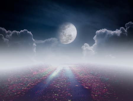 nightly: Beautiful pathway path to tranquil nighttime sky. Attractive photo of a nightly sky with large moon would make a great background. Idyllic rural view of pretty surroundings.
