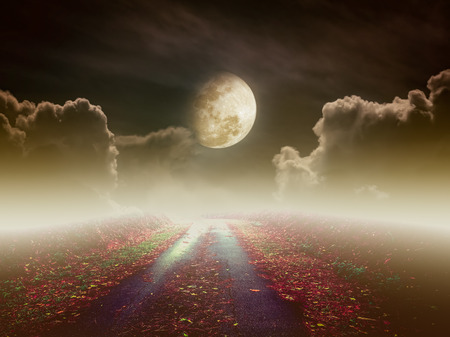 nightly: Beautiful pathway path to tranquil nighttime sky. Attractive photo of a nightly sky with large moon would make a great background. Idyllic rural view of pretty surroundings. Vintage tone.