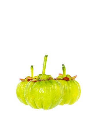 citric: Garcinia cambogia fresh fruit, isolated on white. Garcinia atroviridis is a spice plants. It helps in the metabolism contain high vitamin C and hydroxy citric acids (HCA) for diet and good health.