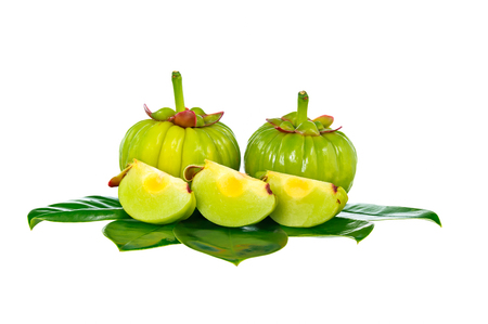 Garcinia cambogia fresh fruit, isolated on white. Garcinia atroviridis is a spice plants and high vitamin C and hydroxy citric acids (HCA) for diet and good health. Фото со стока