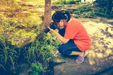 tropical evergreen forest: Asian woman taking with moss covered rocks by professional digital camera at tropical evergreen forest. Outdoor at the daytime with bright sunlight. Vintage tone.