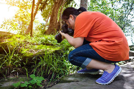 tropical evergreen forest: Closeup asian woman taking with moss covered rocks by professional digital camera at tropical evergreen forest. Outdoor at the daytime with bright sunlight.