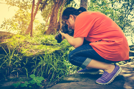 tropical evergreen forest: Closeup asian woman taking with moss covered rocks by professional digital camera at tropical evergreen forest. Outdoor at the daytime with bright sunlight. Vintage tone.