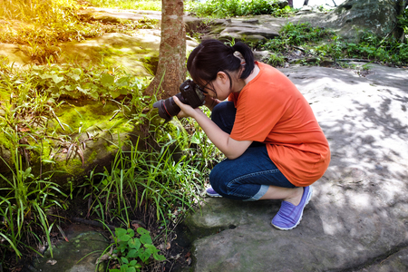 tropical evergreen forest: Asian woman taking with moss covered rocks by professional digital camera at tropical evergreen forest. Outdoor at the daytime with bright sunlight.