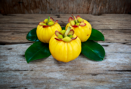 Garcinia cambogia fresh fruit on wood background. Garcinia atroviridis is a spice plants and high vitamin C and hydroxy citric acids (HCA) for diet and good health. Stock Photo - 64878437