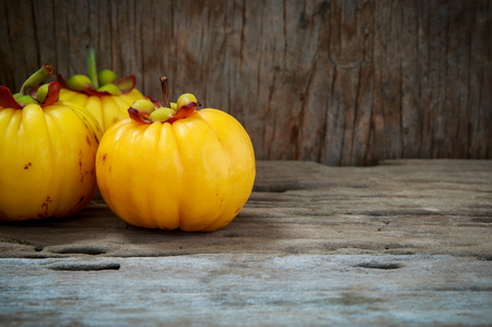 citric: Closeup garcinia cambogia fruit on wood background. Garcinia atroviridis is a spice plants and high vitamin C and hydroxy citric acids (HCA) for diet and good health.