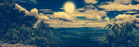 natural process: Panorama of perfect combination natural beauty at national park. Evergreen forest against sky with moon, outdoors at nighttime. Nature background. The moon were NOT furnished by NASA. Cross process. Stock Photo