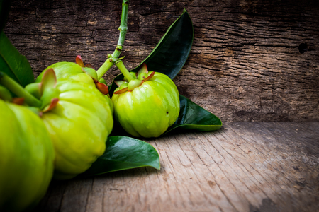 Close up of garcinia cambogia fresh fruit on wood background. Garcinia atroviridis is a spice plants and high vitamin C and hydroxy citric acids (HCA) for diet and good health. Selective focus.