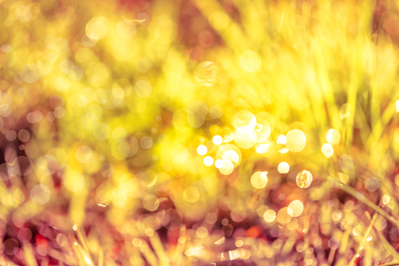 Abstract natural background. Fresh spring grass with dewdrops on grass defocused light blurred background with bright sunlight, outdoor at the daytime. Sepia tone.