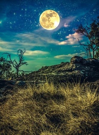 광 야 위의 많은 별 밤 하늘 풍경. 아름 다운 밝은 supermoon, 평온 자연입니다. 크로스 프로세스 및 빈티지 효과 톤입니다. 내 카메라로 찍은 달.