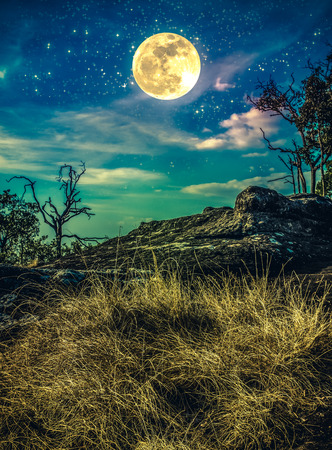 Landscape of night sky with many stars above wilderness. Beautiful bright supermoon, serenity nature. Cross process and vintage effect tone. The moon taken with my own camera.