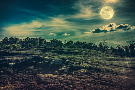Landscape of night sky with cloudy above wilderness area in forest. Beautiful bright full moon, serenity nature background. Cross process and vintage tone. The moon taken with my own camera.