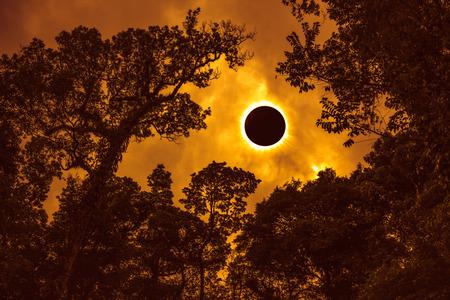 Geweldig wetenschappelijk natuurverschijnsel. Prominentie en interne corona. Totale zonsverduistering die op oranje hemel boven silhouet van bomen, sereniteitsaard gloeit. Abstracte fantastische achtergrond.