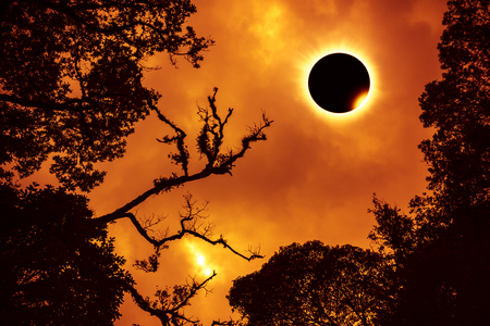 Amazing scientific natural phenomenon. Prominence and internal suns corona. Total solar eclipse with diamond ring effect glowing on orange sky above silhouette of trees, serenity nature background. Stock Photo