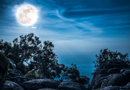 Silhouette of the rock and trees against blue sky with bright full moon above wilderness area in forest. Serenity nature background. Outdoor at nighttime. The moon taken with my own camera.
