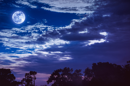 Night landscape of sky with dark cloudy and full moon above silhouettes of trees. Serenity nature background in gloaming time. Outdoor at nighttime. The moon taken with my own camera. Stock Photo