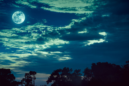 Night landscape of sky with dark cloudy and bright full moon above silhouettes of trees. Serenity nature background in gloaming time. Outdoor at nighttime. The moon taken with my own camera. Stock Photo