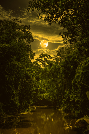 Landscape of night sky with clouds and full moon over serenity nature in forest, dark tone. Tranquil river and trees in the evening at national park. Sepia tone. The moon taken with my own camera. Stock Photo