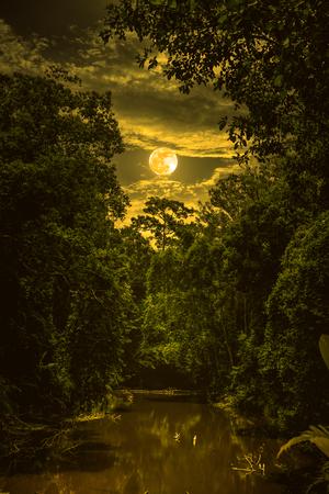 Landschaft des nächtlichen Himmels mit Wolken und Vollmond über Ruhenatur im Wald, dunkler Ton. Ruhiger Fluss und Bäume am Abend am Nationalpark. Sepia-Ton Der Mond mit meiner eigenen Kamera aufgenommen. Standard-Bild - 88041237