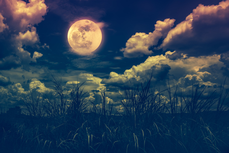 Landscape of night sky with clouds. Beautiful bright full moon above wilderness area in forest, serenity nature background. Outdoors at nighttime. Vintage film filter effect.