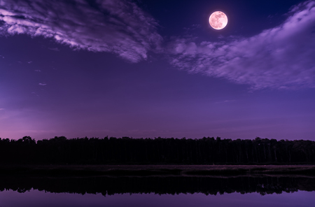 Beautiful landscape of purple sky with cloud and bright full moon above silhouettes of trees at seaboard. Serenity nature background, outdoor at nighttime. The moon taken with my camera.