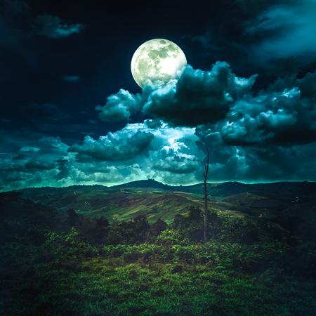 Beau paysage de montagne couvert de forêt d'arbres verts, nature incroyable. Ciel nocturne avec pleine lune derrière partiellement nuageux au-dessus de la chaîne de montagnes. Fond de sérénité. La lune prise avec mon appareil photo.
